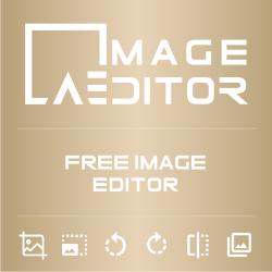 Art Evince Image Editor